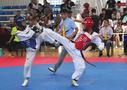 2018年全国青少年跆拳道U系列赛(河南站)满意闭幕