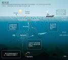 Nature新评论:UVP+EcoTaxa用于海洋弱光层生物研究!