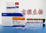 黄瓜绿色斑点花叶病毒(CGMMV)ELISA试剂盒