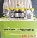 凝血因子VIII相关抗原(VIII-Ag)ELISA试剂盒