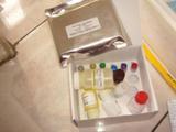 小鼠白介素2受体(IL-2R)ELISA试剂盒