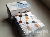 人白介素2ELISA试剂盒,人IL-2试剂盒操作简单