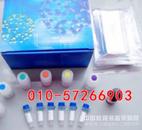 兔血栓素B2 ELISA Kit说明书/TXB2 ELISA试剂盒