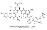 现货 Oxytocin Acetate/醋酸缩宫素(催产素) (Chembest)