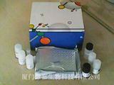 人成熟促进因子(MPF)ELISA试剂盒