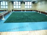 舞蹈房练功毯(北京实验二小案例)
