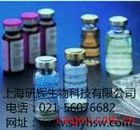大鼠抗小核糖核蛋白/Sm抗体(snRNP/Sm)ELISA试剂盒
