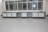 实验室整体装修设计,实验台,通风柜,中央台,边台