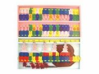 DNA結構及復制模型
