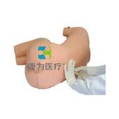 """""""康為醫療""""腰椎穿刺訓練仿真模擬人,成人腰椎穿刺模型"""
