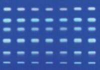 105559 Supelco RP-18薄层层析板 含荧光指示剂 1.05559.0001