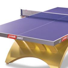 红双喜【DHS】金彩虹比赛赛事乒乓球桌专业球台TCH-G