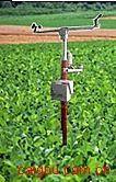 土壤墒情与旱情管理系统(无线传输型)