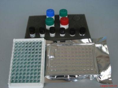 兔肌钙蛋白Ⅰ(Tn-Ⅰ)酶联免疫(Elisa)试剂盒
