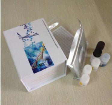 甘露糖受体C1(MRC1)检测试剂盒(酶联免疫吸附试验法)