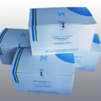 人二级淋巴组织趋化因子ELISA试剂盒