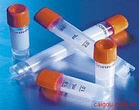 荧光素标记小鼠抗羊IgG