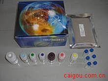 小鼠Elisa-皮质醇试剂盒,(Cortisol)试剂盒