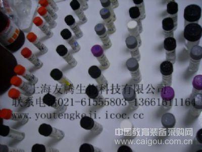 人17-酮类固醇(17-KS)ELISA Kit