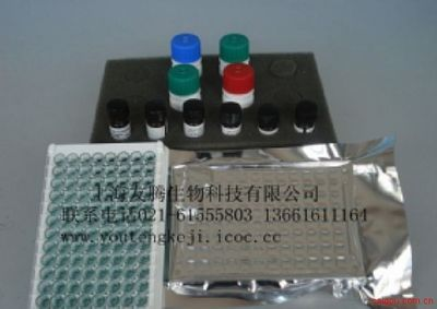 人巨噬细胞炎性蛋白3β(MIP-3β/ELC/CCL19)ELISA Kit