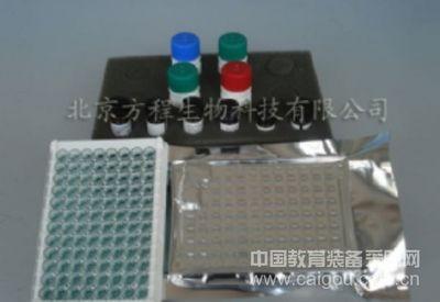 ELISA试剂盒现货供应小鼠IP-10/CXCL10 ELISA Kit检测价格