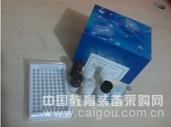 小鼠补体因子H(CFH)酶联免疫试剂盒
