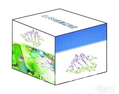 人抵抗素样分子β(RELM-β)ELISA定量试剂盒