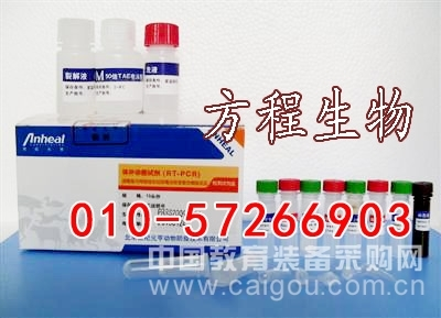 人糖原磷酸化酶同工酶II (GP-II )ELISA检测试剂盒,96T/48T