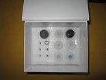 血纤蛋白ELISA试剂盒厂家代测,进口人(Fibrin)ELISA Kit说明书