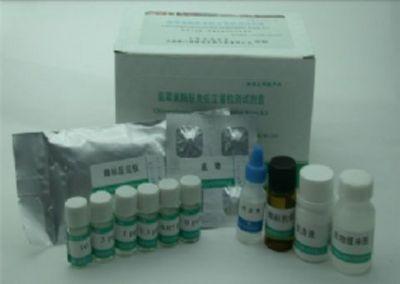 人抗乙型肝炎病毒e抗体(HBeAb)ELISA试剂盒
