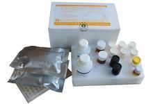 鱼抗中性粒细胞核周抗体ELISA试剂盒