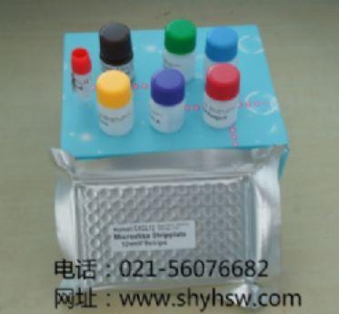 白色念珠菌IgG ELISA试剂盒