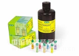 乙酸缓冲液(0.05mol/L,pH4.3)