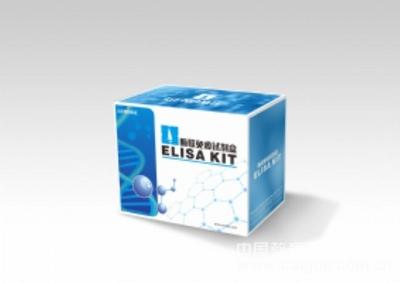 小鼠CS试剂盒(柠檬酸合成酶)ELISA试剂盒全国质保包邮