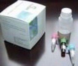 尿素氮(BUN)检测