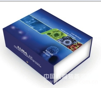 人尿嘧啶核苷磷酸化酶1(UPP1)ELISA试剂盒