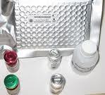 扁豆黄色花叶病毒(BYMV)ELISA试剂盒