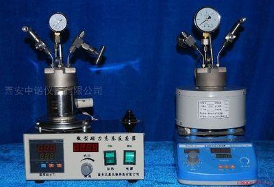 小型高压反应釜 西安高压反应釜厂家
