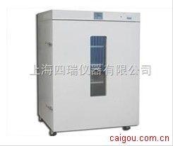 电热恒温鼓风干燥箱 RT+10~250℃