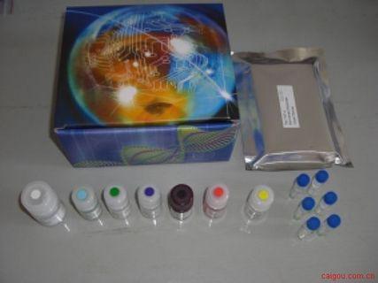 人BDNF检测Elisa试剂盒