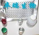 小鼠多巴胺(DA)Elisa试剂盒
