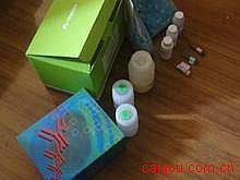 人Elisa-布鲁氏菌抗体IgG试剂盒,(Brucella Ab IgG)试剂盒