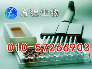 小鼠抵抗素(Resistin)代测/ELISA Kit试剂盒/说明书