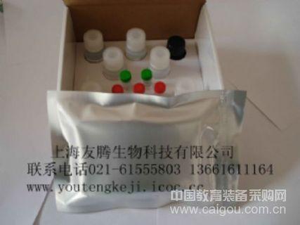 大鼠内皮素1(ET-1)Elisa kit rat ET-1 Elisa kit