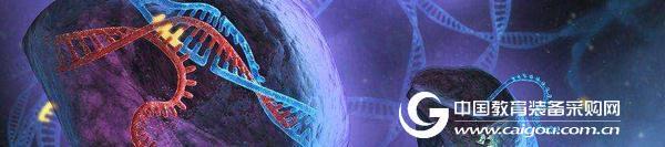 视频原子力显微镜显示实时CRISPR基因编辑