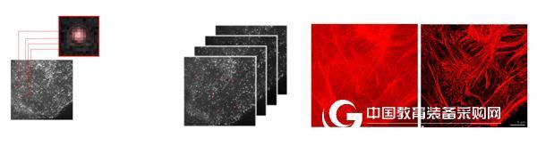 新一代荧光显微镜可轻松实现超分辨成像