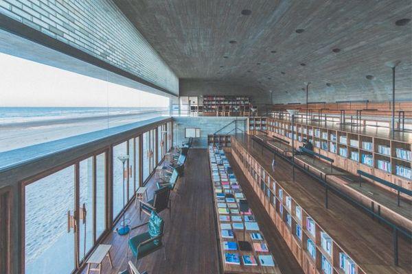 公共图书馆数字化,我们能做什么?
