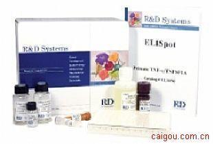 小鼠IGFBP-3检测Elisa试剂盒
