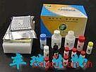 蔗糖测试盒