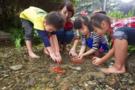 井喷式发展的自然教育,美日德中如何做?
